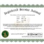 004 Service Dog Certificate Template Frightening Ideas Pdf for Service Dog Certificate Template