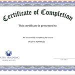 006 Template Ideas Certificate Templates For Word Free Regarding Free Certificate Templates For Word 2007