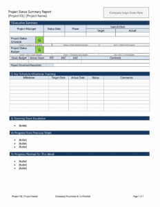 010 Status Report Template Ideas Weekly Remarkable Excel In Daily Project Status Report Template