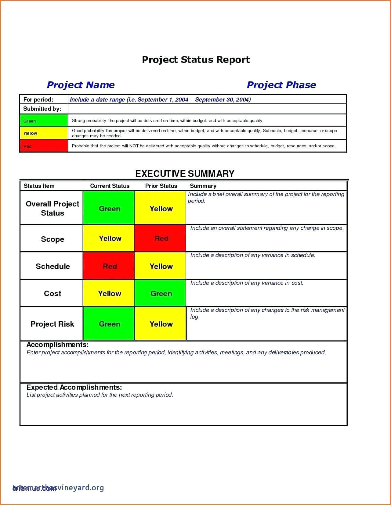 010 Template Ideas Project Management Executive Summary Within Executive Summary Project Status Report Template