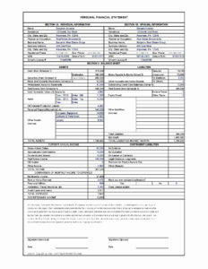 017 Template Ideas Blank Personal Financial Statement Form inside Blank Personal Financial Statement Template