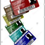 11+ Iconic Student Card Templates – Ai, Psd, Word | Free Intended For Pvc Id Card Template