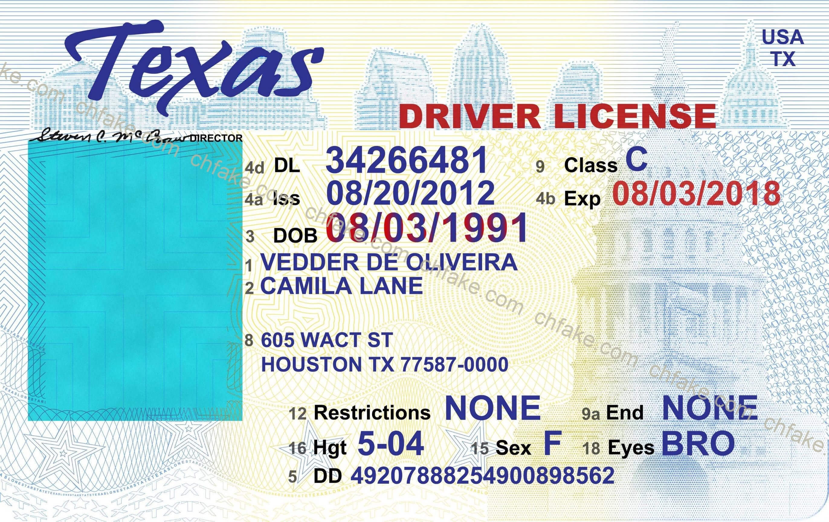 12 Free Drivers License Template Photoshop | Proposal Resume Throughout Blank Drivers License Template