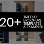 20+ Professional Trifold Brochure Templates, Tips & Examples With Regard To Good Brochure Templates