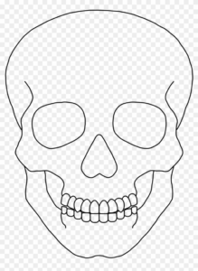 29 Skull Clipart Template Free Clip Art Stock Illustrations in Blank Sugar Skull Template