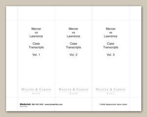 3 Ring Binder Spine Label Template – Hizir.kaptanband.co inside 3 Inch Binder Spine Template Word