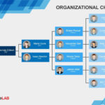 40 Organizational Chart Templates (Word, Excel, Powerpoint) pertaining to Word Org Chart Template