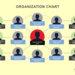 40 Organizational Chart Templates (Word, Excel, Powerpoint) Regarding Organogram Template Word Free