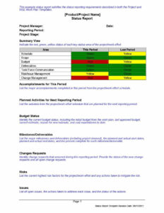 40+ Project Status Report Templates [Word, Excel, Ppt] ᐅ for Stoplight Report Template