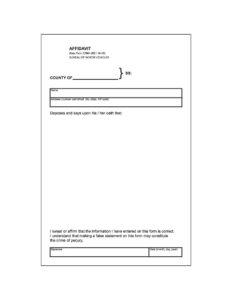 48 Sample Affidavit Forms & Templates (Affidavit Of Support in Blank Legal Document Template