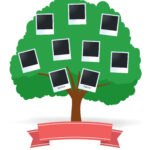 50+ Free Family Tree Templates (Word, Excel, Pdf) ᐅ Inside Blank Family Tree Template 3 Generations