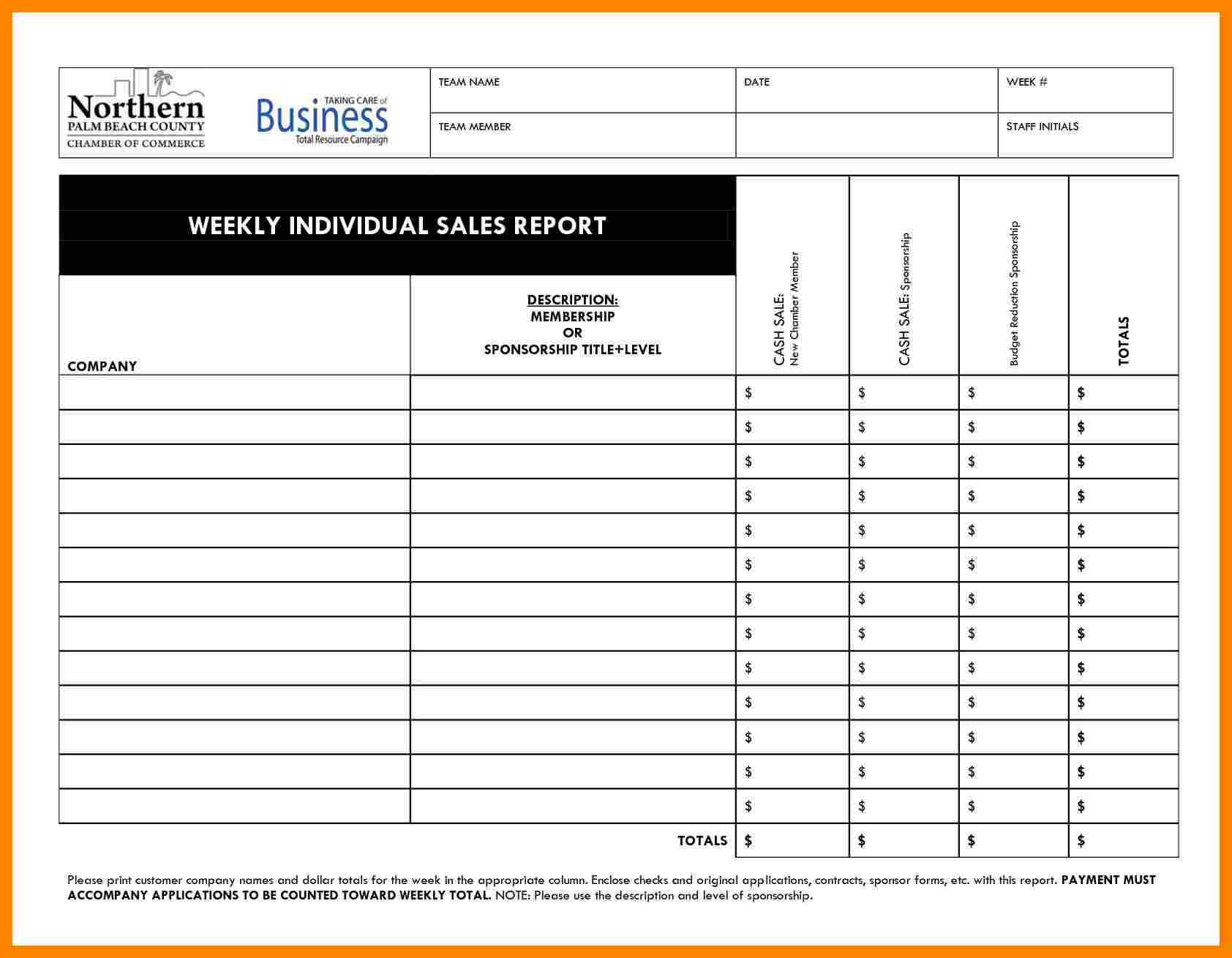 8+ Daily Activity Report Template Free Download | Lobo In Sales Call Report Template Free