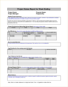 8+ Weekly Status Report Examples – Pdf | Examples pertaining to Weekly Accomplishment Report Template