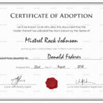 Adoption Certificate Template You Will Never Believe These Intended For Child Adoption Certificate Template