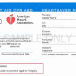 Aha Cpr Card Template Fresh Fraud Warning – Template Modern Within Cpr Card Template