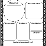 Animal Report Template | Science | Report Template pertaining to Template For Information Report