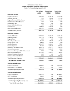 Audited Financial Statements Template Statement Sample with Llc Annual Report Template