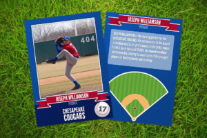 Baseball Card Template Word The Worst Advices We've Heard throughout Baseball Card Template Microsoft Word