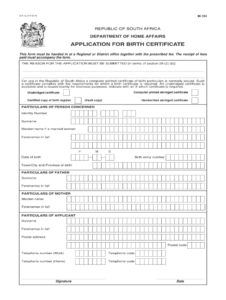 Bi 154 Birth Certificate – Fill Online, Printable, Fillable throughout South African Birth Certificate Template