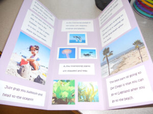 Biome Travel Brochure – As An Assessment, Have The Students with Brochure Templates For School Project
