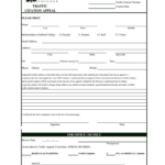 Blank Police Ticket Template – Fill Online, Printable Throughout Blank Parking Ticket Template