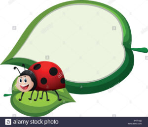Border Template With Ladybug On Leaf Illustration Stock With Blank Ladybug Template