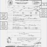 Brilliant Ideas For Birth Certificate Template Uk Of Your Regarding Birth Certificate Template Uk