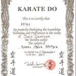Brilliant Ideas For Martial Art Certificate Templates Free Within Free Art Certificate Templates