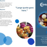 Brochures – Office Intended For Brochure Templates For School Project