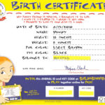 Build-A-Bear Birth Certificate | Party: Build-A-Bear | Build regarding Build A Bear Birth Certificate Template