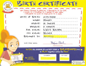 Build A Bear Birth Certificate   Party: Build A Bear   Build Regarding Build A Bear Birth Certificate Template