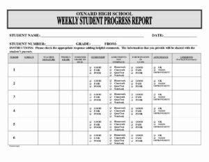 Business Progress Report Template – Caquetapositivo with regard to Educational Progress Report Template