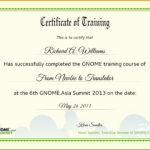 Certificate Of Completion Template Free Download Course With Regard To Class Completion Certificate Template