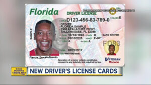 Check Out Florida's New Driver's Licenses And Id Cards For Florida Id Card Template