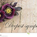 Condolence Card Stock Image. Image Of English, Grief – 38577149 Within Sorry For Your Loss Card Template