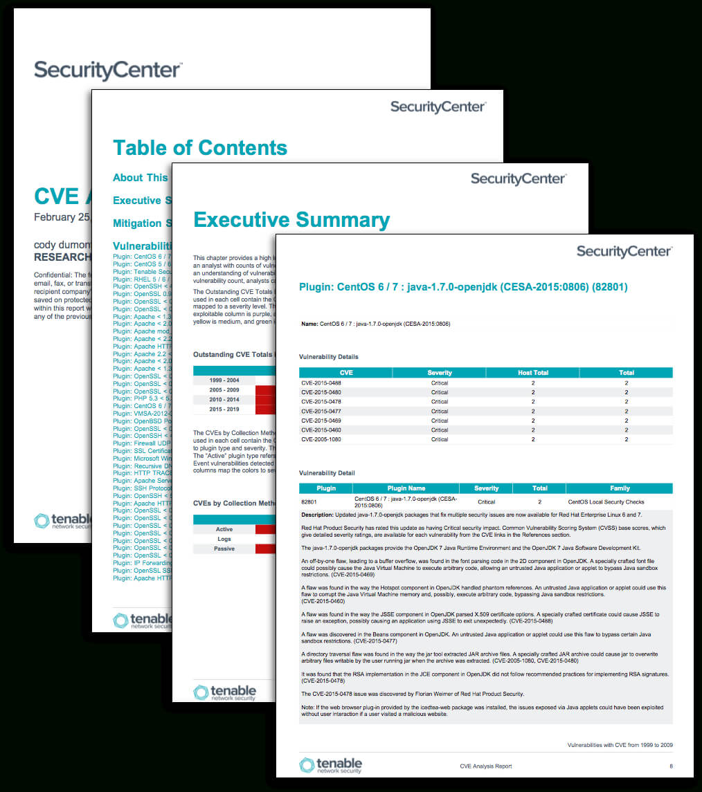 Cve Analysis Report - Sc Report Template | Tenable® within Information Security Report Template