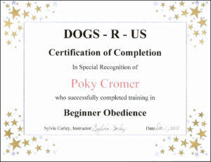 Dog Birth Certificate Template Free Beautiful Dog Birth for Birth Certificate Template For Microsoft Word