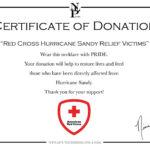 Donation Appreciation Certificate Template – Www.biomestry2.tk Intended For Donation Certificate Template