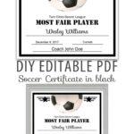 Editable Pdf Sports Team Soccer Certificate Diy Award Within Soccer Certificate Template