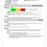 Executive Report Template   Meetpaulryan Throughout Executive Summary Project Status Report Template