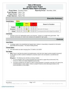 Executive Report Template | Meetpaulryan throughout Executive Summary Project Status Report Template