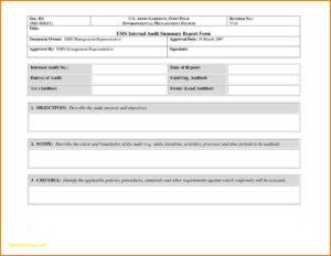 Expert Witness Invoice Template Best Of Expert Witness pertaining to Expert Witness Report Template