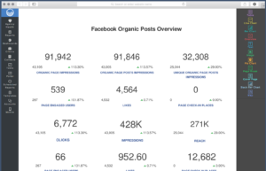 Facebook Insights Report Template | Reportgarden with regard to Report Content Page Template