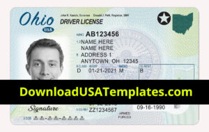 Fake Driver License Template | Fake Id Template Generator Pertaining To Florida Id Card Template