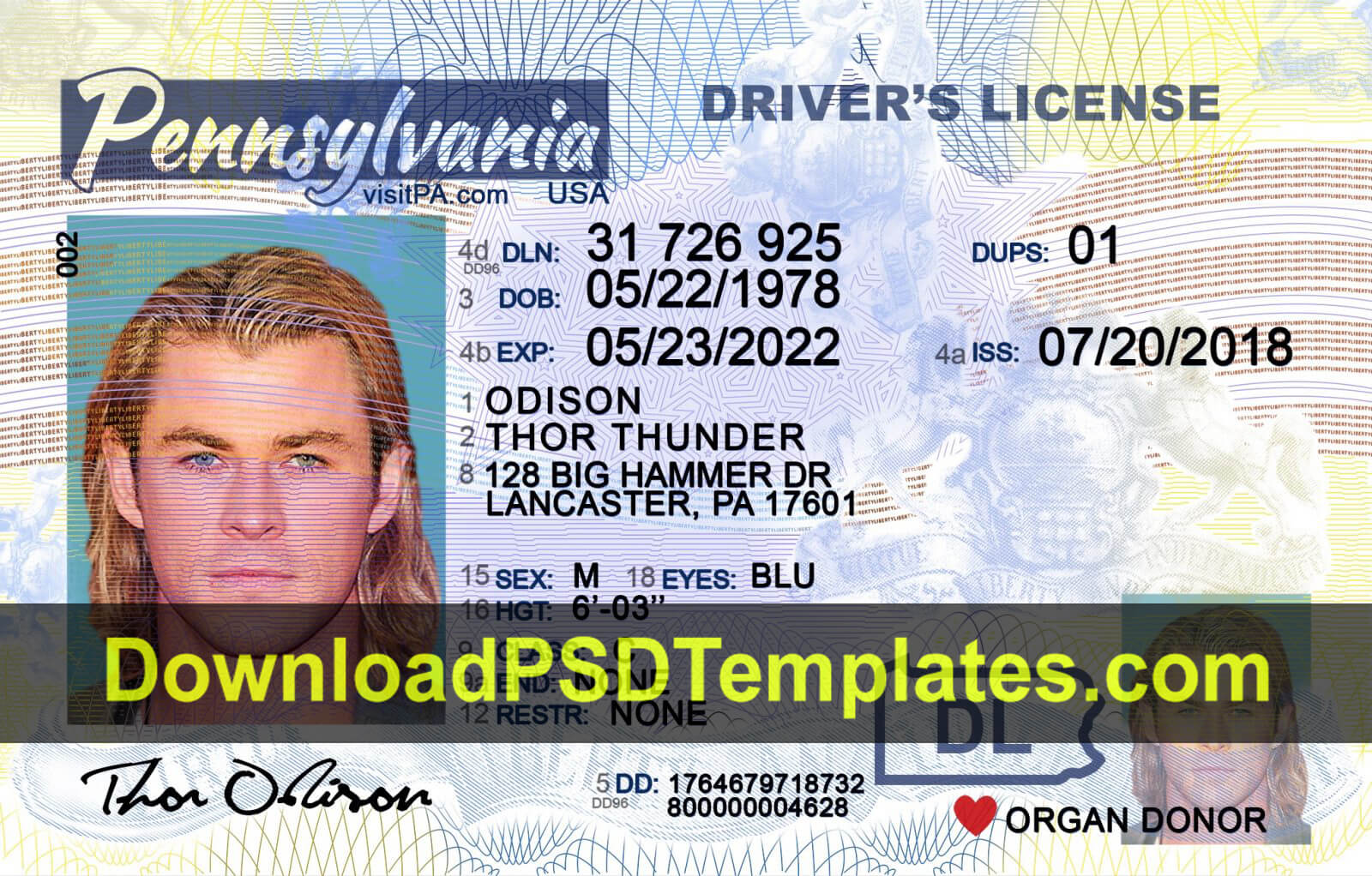 Fake Driving License Templates [Psd Files] For Georgia Id Card Template