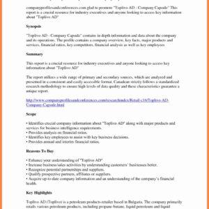 Financial Analysis Report Samples Spreadsheet Template inside Company Analysis Report Template