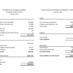 Financial Reports Lift Foundation Statements Sample Report Within Annual Financial Report Template Word