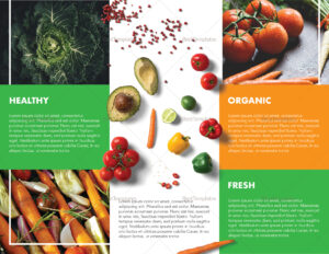 Food Brochure Template Intended For Nutrition Brochure Template