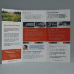 Free Adobe Illustrator Flyer Template – Verypage.co Regarding Brochure Template Illustrator Free Download