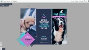 Free Brochure Maker | Brochure Creator | Visme within One Sided Brochure Template